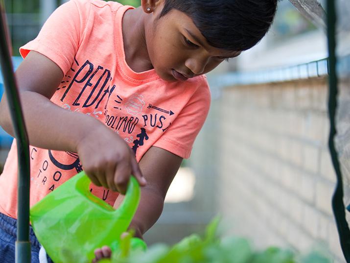 Plantjes-water-geven---kik-kinderopvang